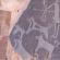 في السعودية العثورعلى نقوش أثرية .. تصوّر كلاباً مربوطة بأطواق – مشاركة:ديفيد غريم