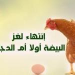 أخيراً إنتهى وحُلَّ لُغز البيضة أولاً أم الدجاجة ..